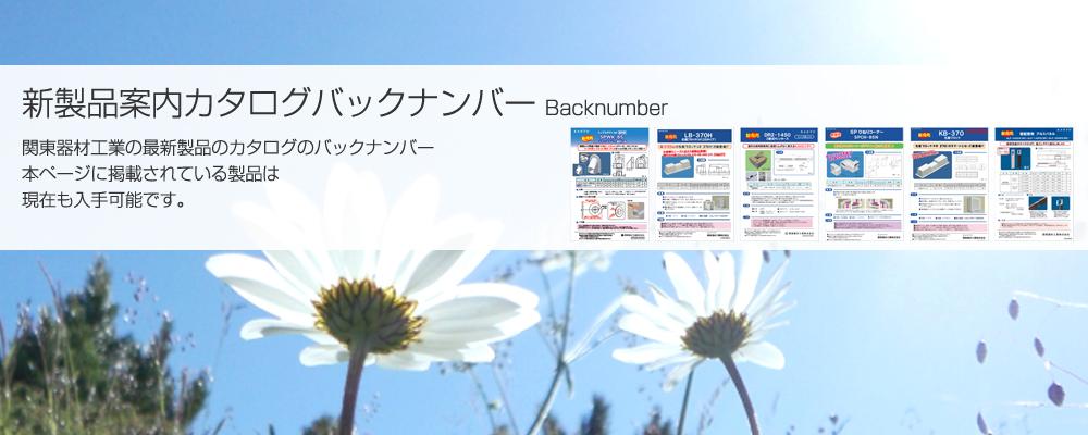 mainv_backnumber